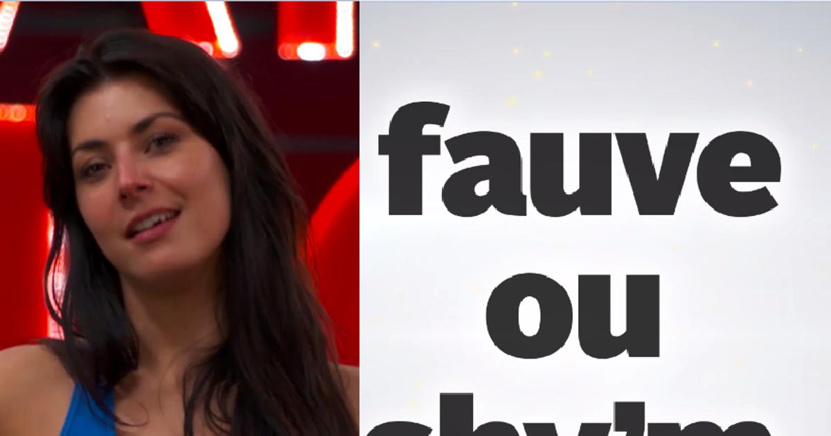 Danse avec les stars  : Le speed dalsing de Candice Pascal - Fauve ou Shy'm ?  - TF1