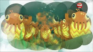 Revoir Les octonauts en streaming